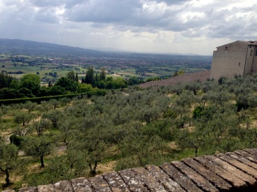 The hotel view in Assisi, Italy