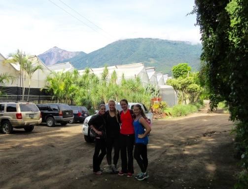 Coffee farm below Acatenango volcano, Antigua, Guatemala