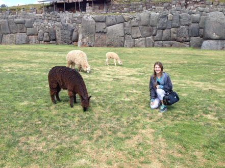 Hanging with some alpacas in Peru