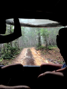 Driving to the Elephant Jungle Sanctuary in Chiang Mai, Thailand