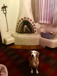 Dakota by the fire at the Sagebrush Inn in Taos, New Mexico
