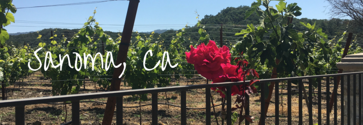 Sonoma Bachelorette – Part 2