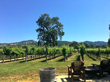Loxton Winery in Sonoma, California