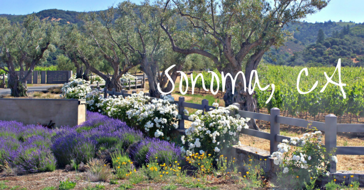 Sonoma Bachelorette Weekend – Part 1