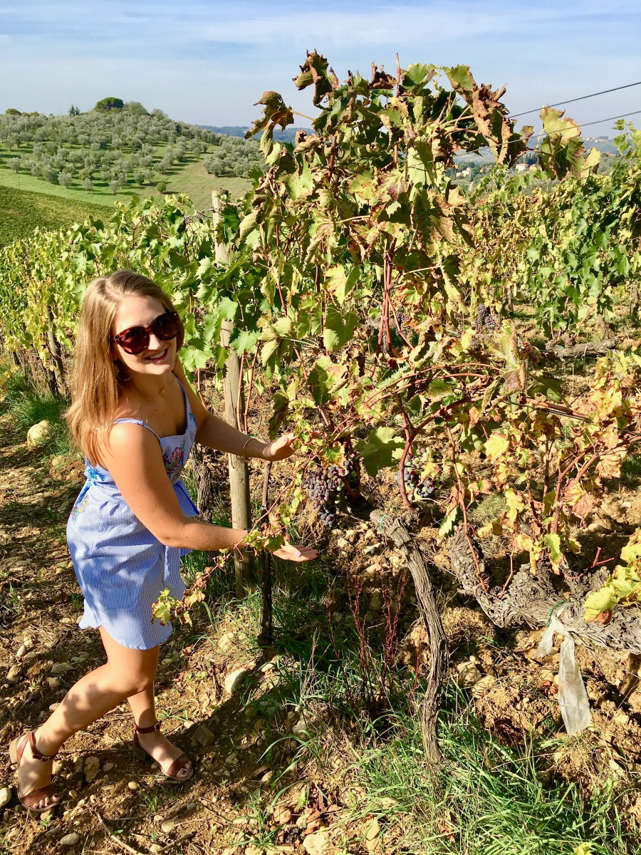 Wandering the vineyards in the Chianti wine region of Italy