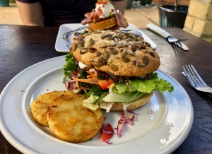 Lamb burger from Hot Waves Cafe in Hahei, New Zealand