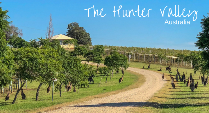 The Hunter Valley – Day 2