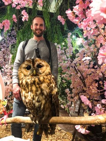 Exploring an owl cafe in Tokyo, Japan