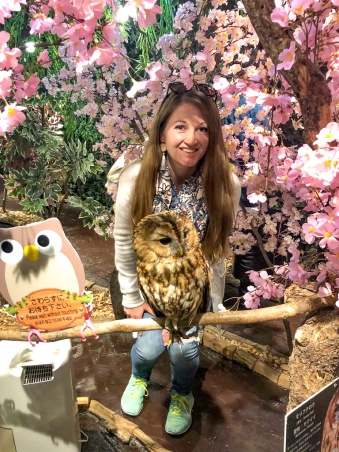 Exploring an owl cafe in Tokyo, Japan